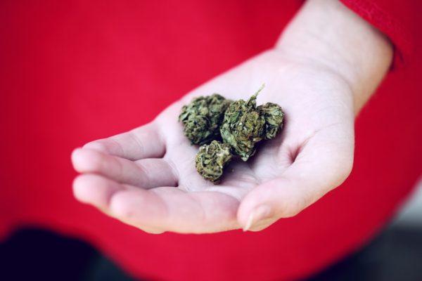 大麻の合法化